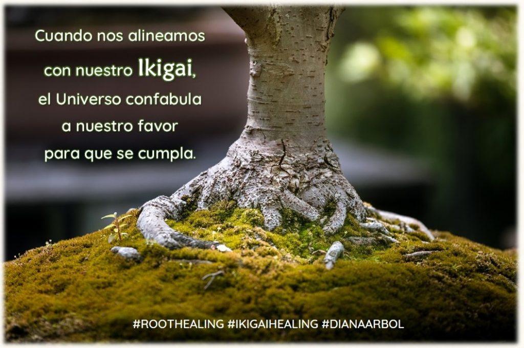Root Healing