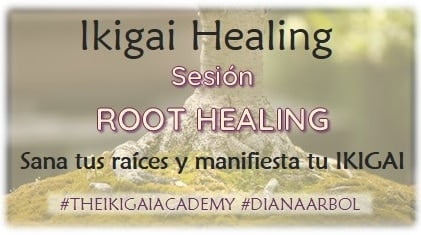 Sesion Root Healing