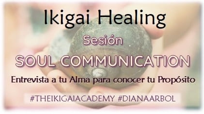 Sesion Soul Communication