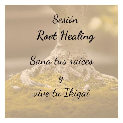 Sesión Root Healing