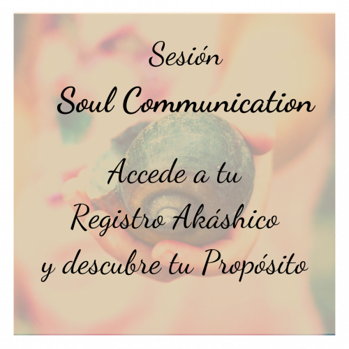 Sesión Soul Communication