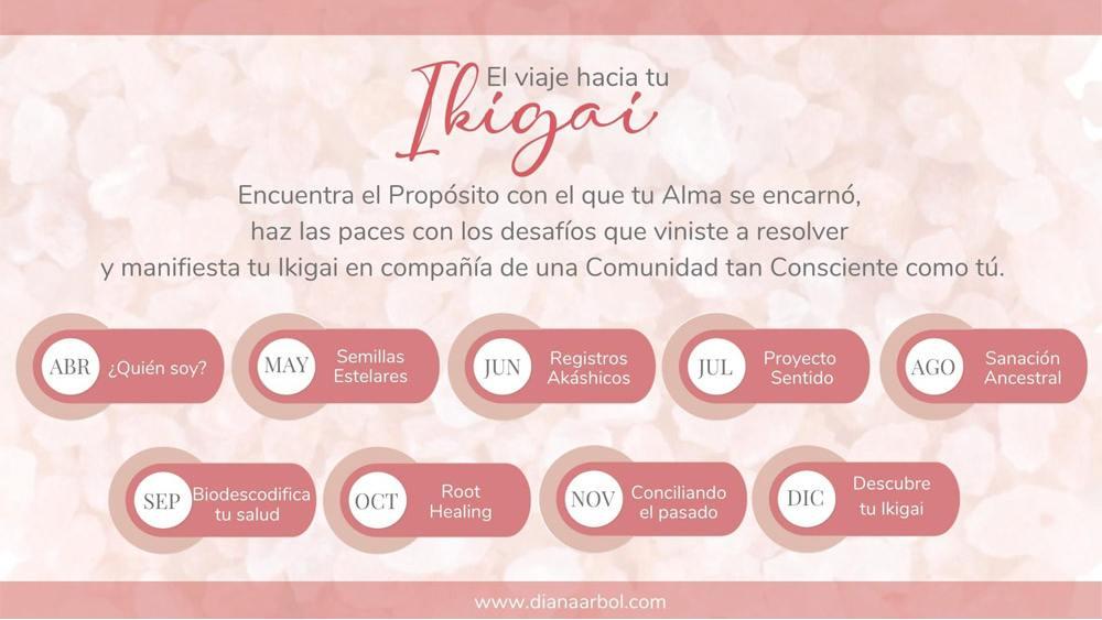El viaje hacia tu Ikigai. Programación