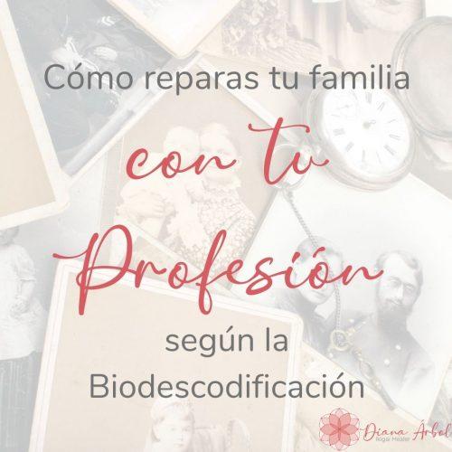 Cómo reparas a tu familia con tu profesión